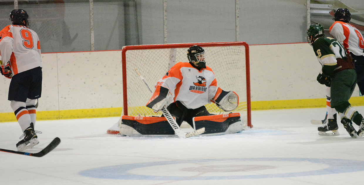 Photo for Warrior hockey sweeps Rochester College