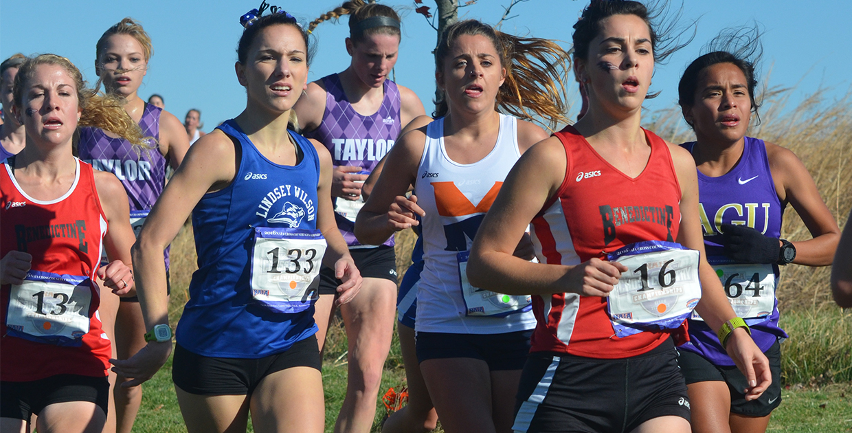 Photo for Smallfoot finishes in top third of field at NAIA Cross Country Championships